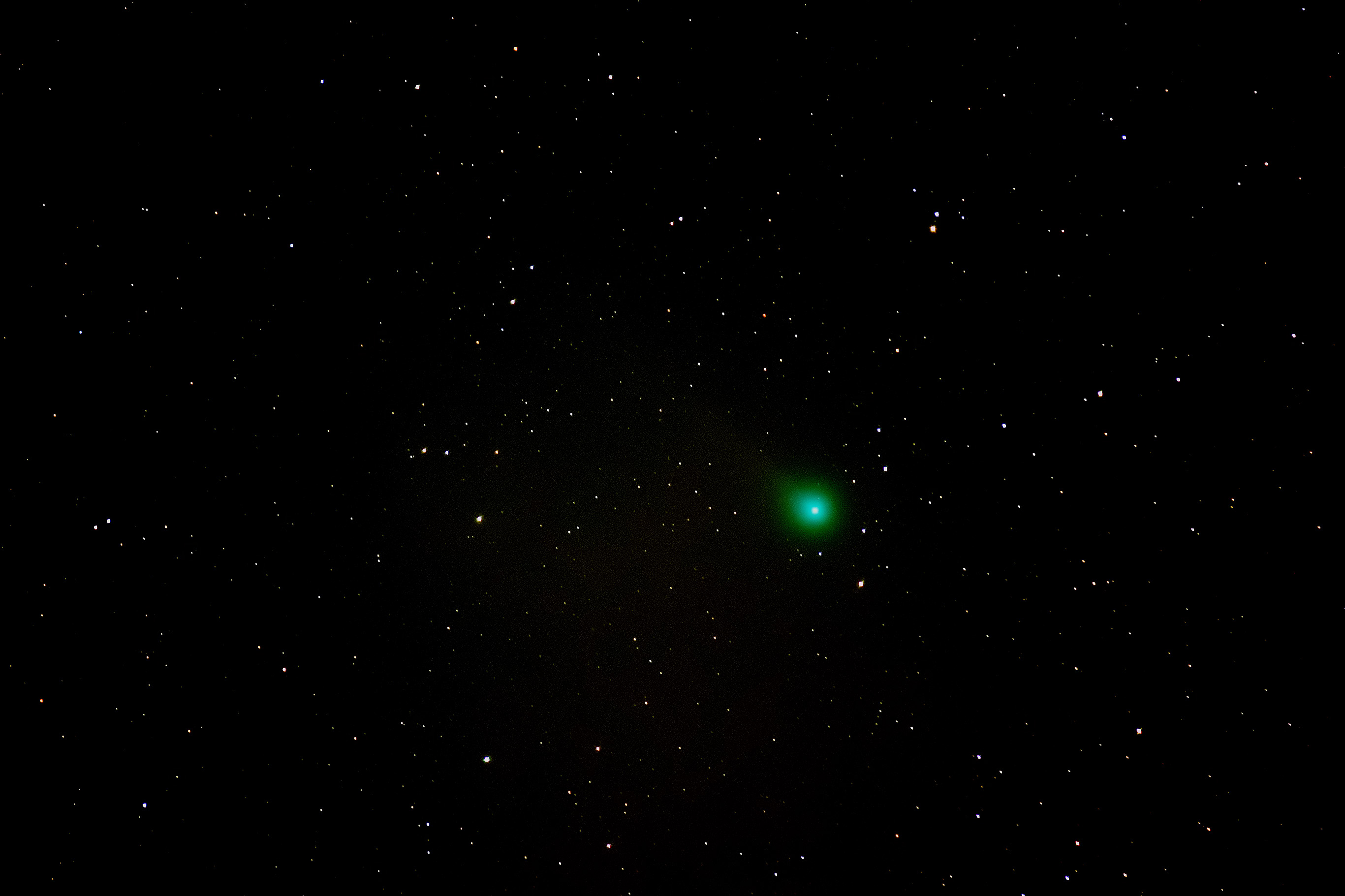 Comet C/2014 Q2 Lovejoy from Blackheath by Mike Meynell