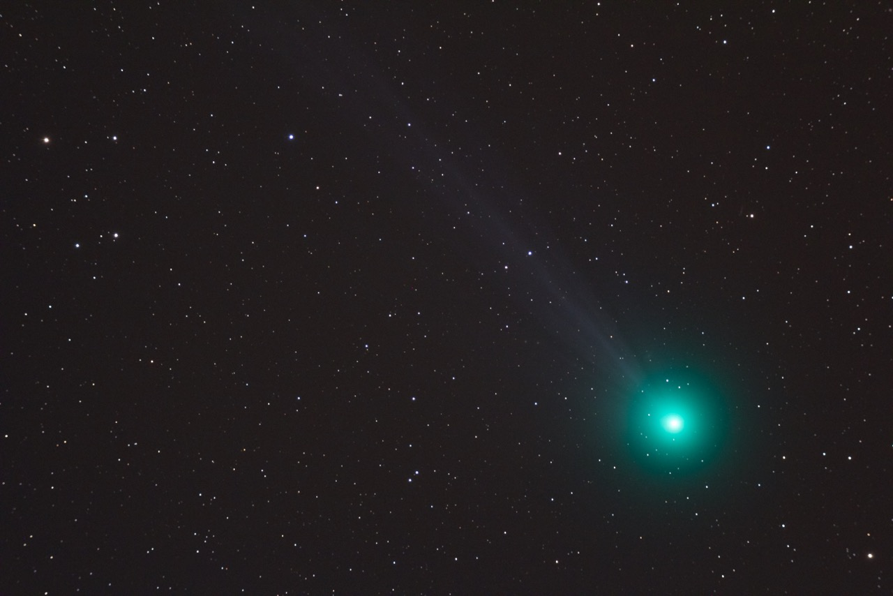Comet C/2014 Q2 Lovejoy by Martin Male