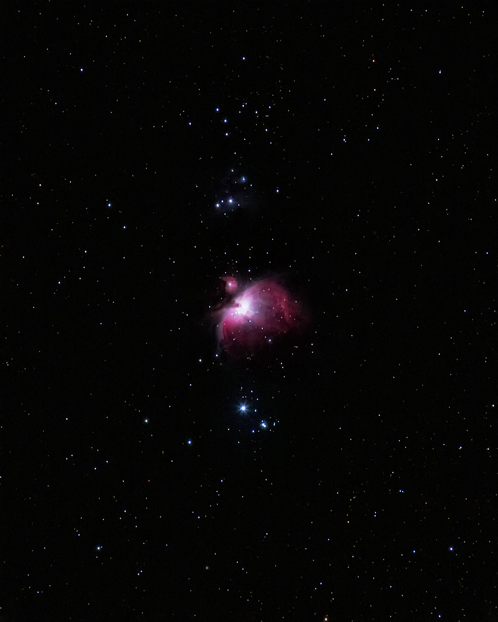 M42 Orion Nebula on Blackheath by Mike Meynell